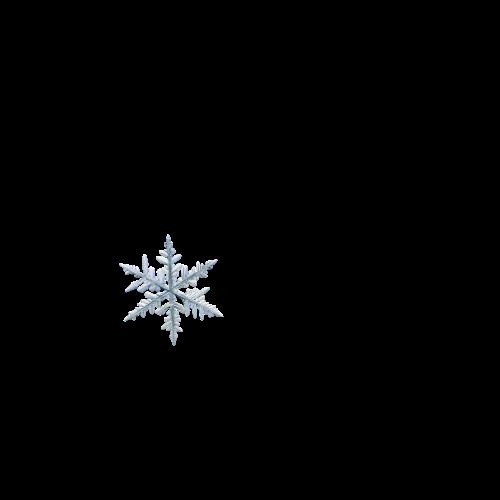 Fiocco di neve 3