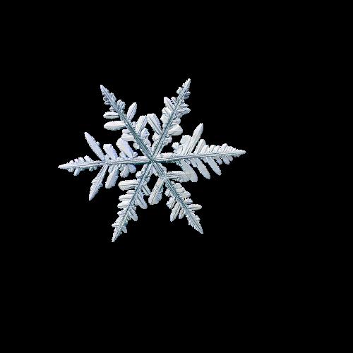 Fiocco di neve 5