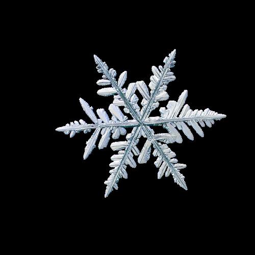 Fiocco di neve 7
